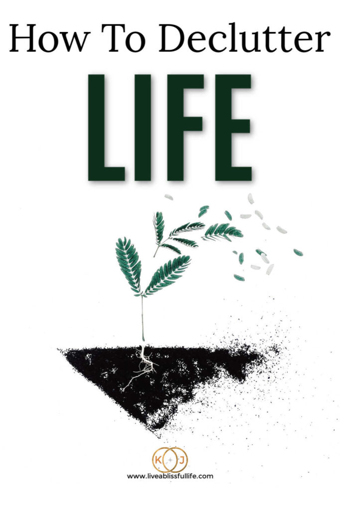image: green fern on black soil text: how to declutter life
